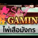 Sexy gaming เสือมังกรทริคไม่ลับ
